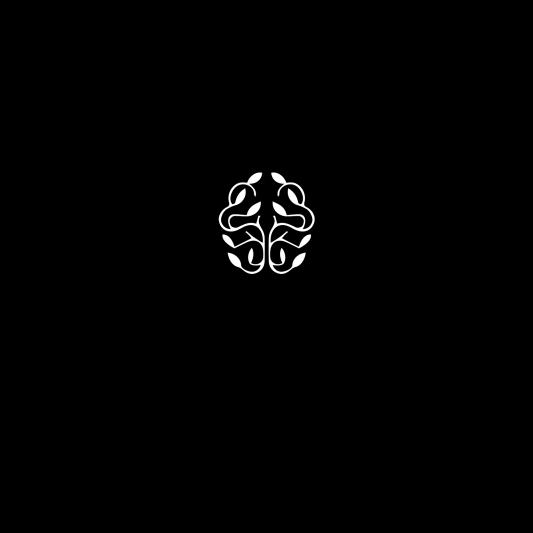 Comunicazione visiva: Branding e Stationary per Olère - Logo nero-bianco